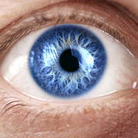 """What are """"Spots and """"Flashes"""" in the Eyes? Are They Common?"""